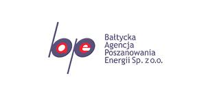 Logo pequeño Baltic